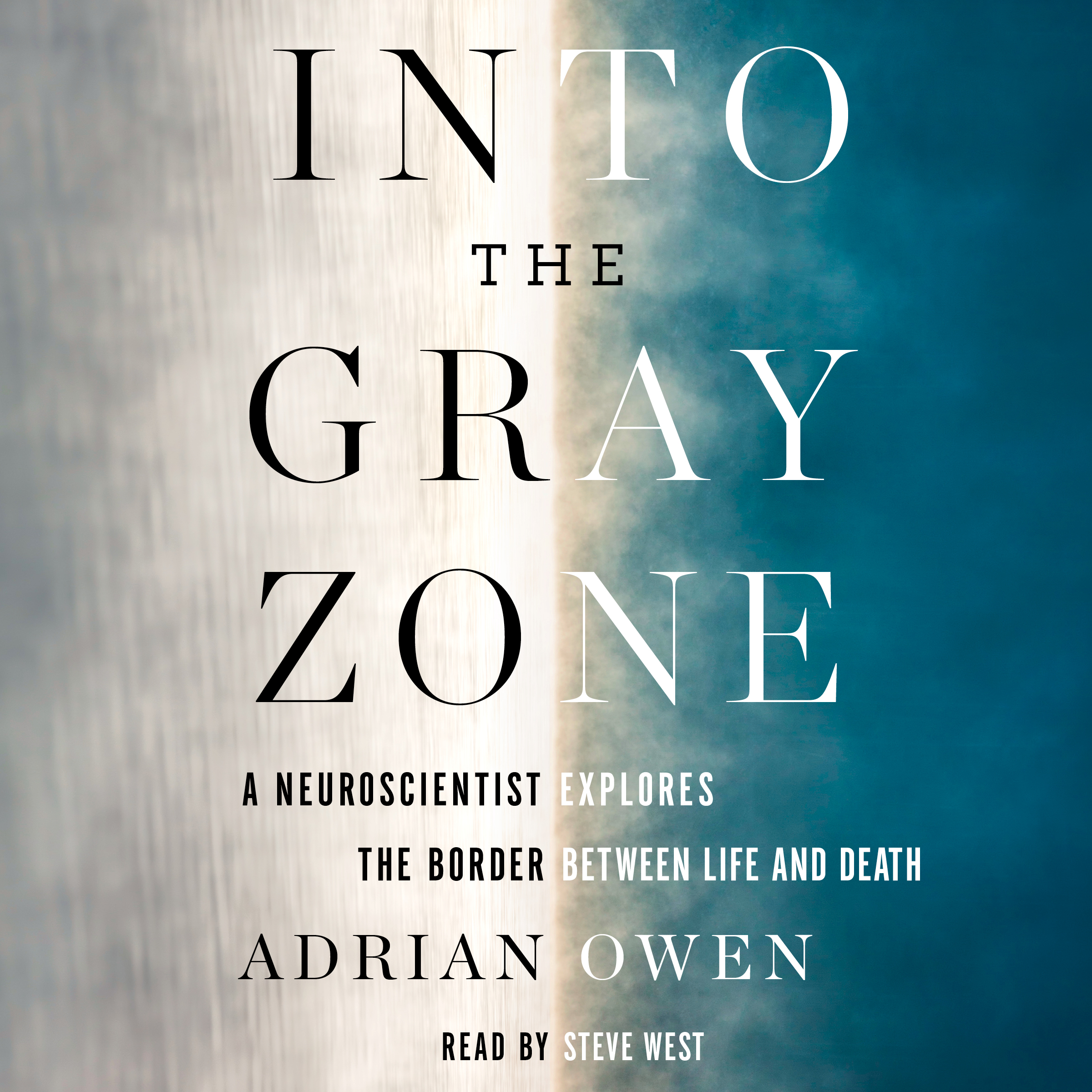Into the gray zone 9781508239154 hr
