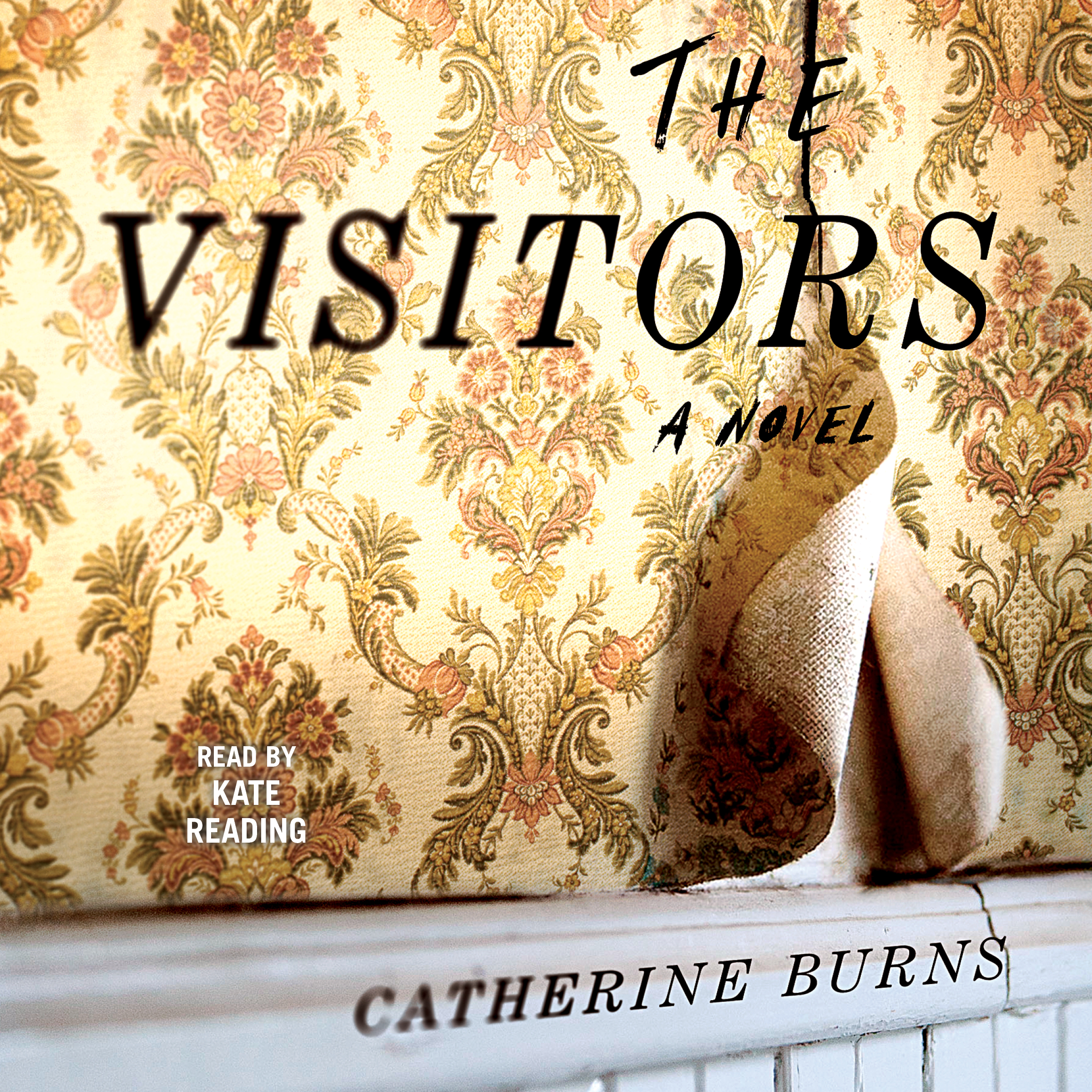 The visitors 9781508243946 hr