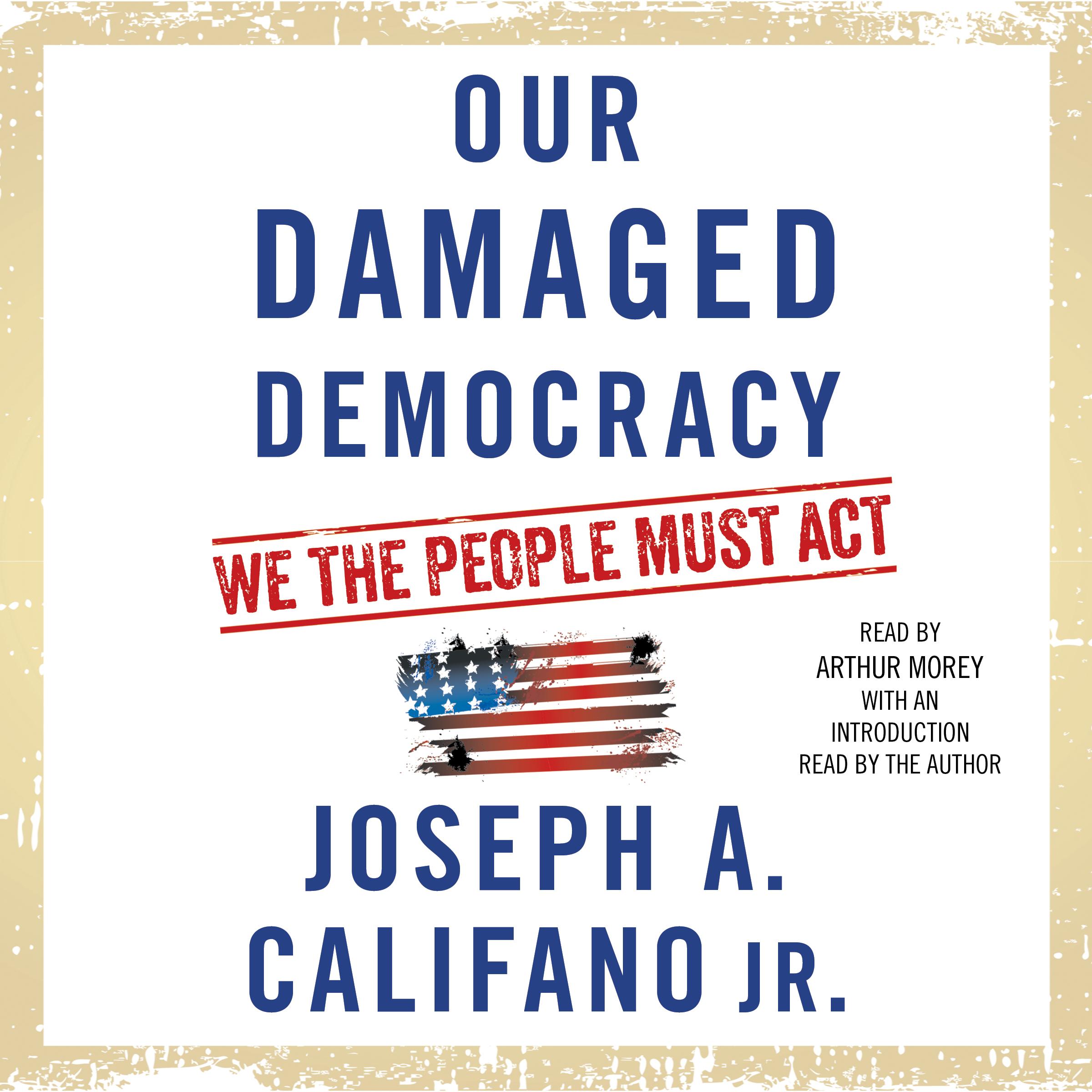 Our damaged democracy 9781508255321 hr