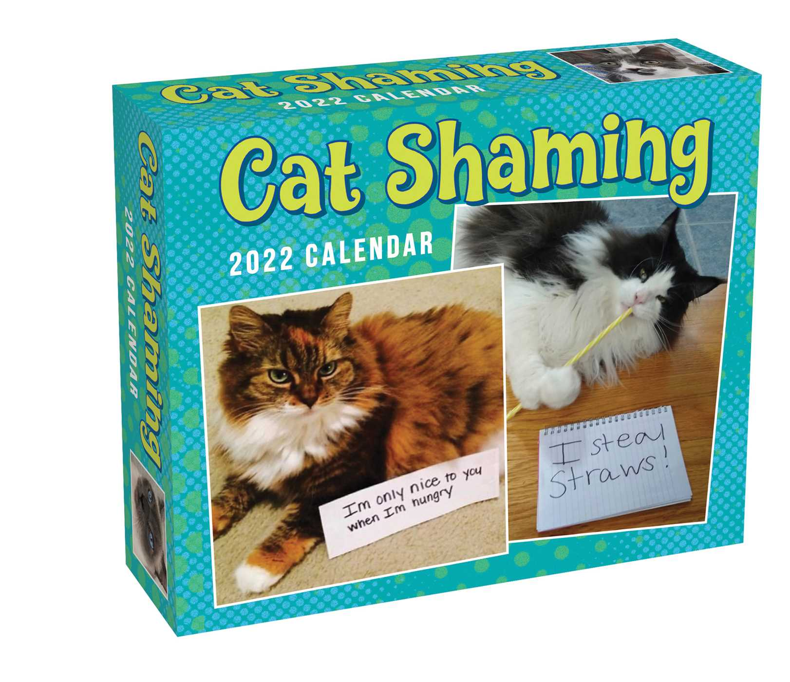 Grumpy Cat Calendar 2022.Cat Shaming 2022 Day To Day Calendar Book Summary Video Official Publisher Page Simon Schuster