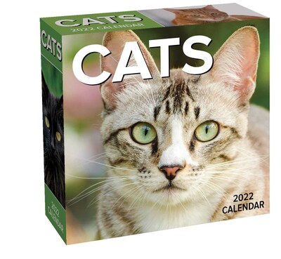 Cat Calendar 2022.Cats 2022 Day To Day Calendar Book Summary Video Official Publisher Page Simon Schuster
