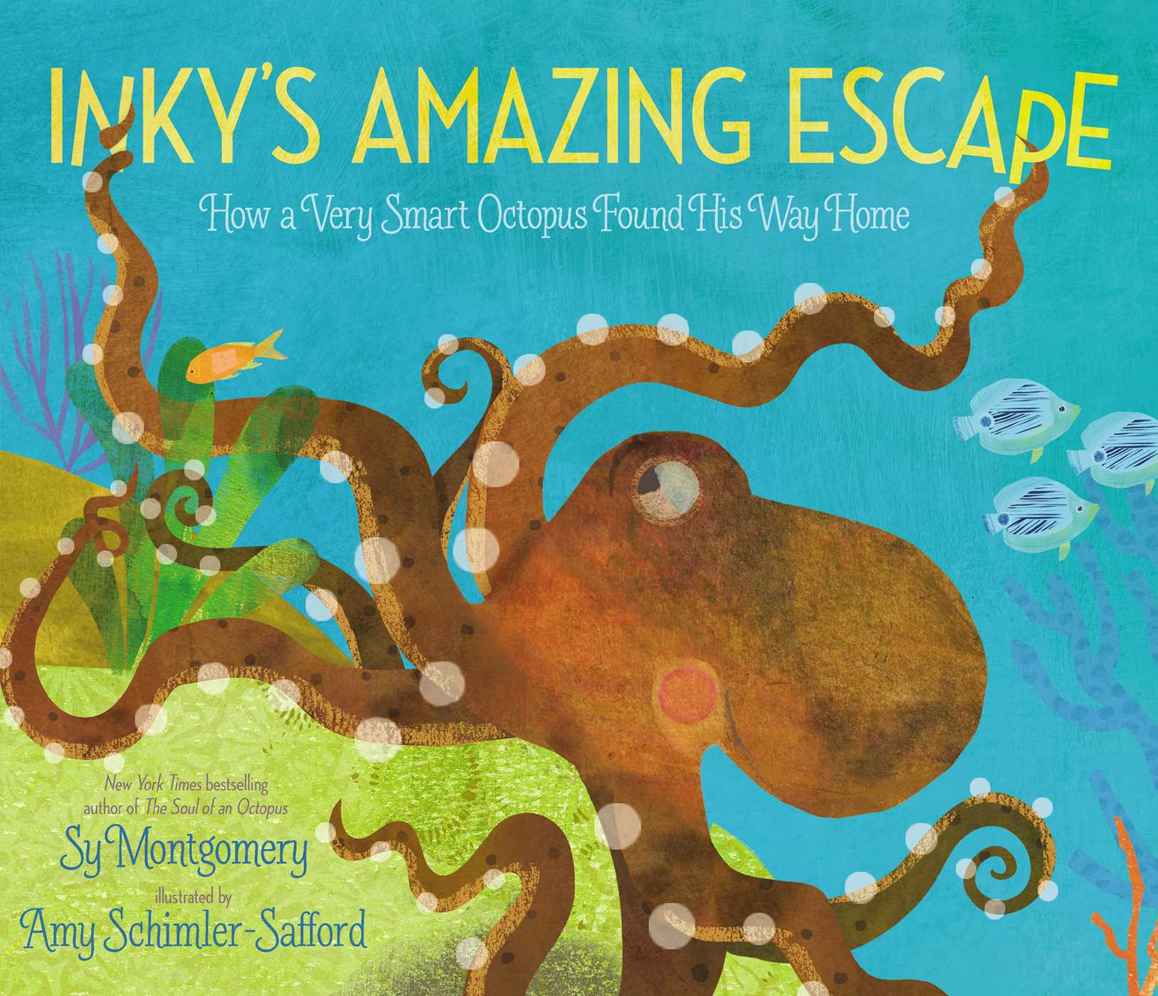Inkys amazing escape 9781534401914 hr