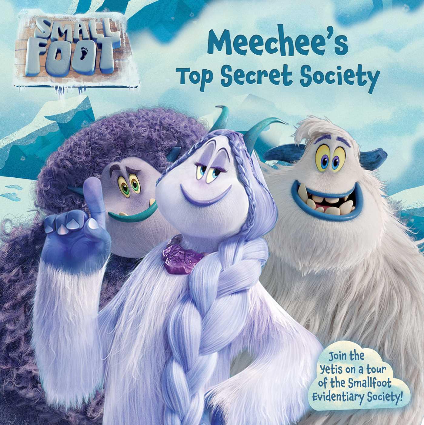 Meechees top secret society 9781534431706 hr
