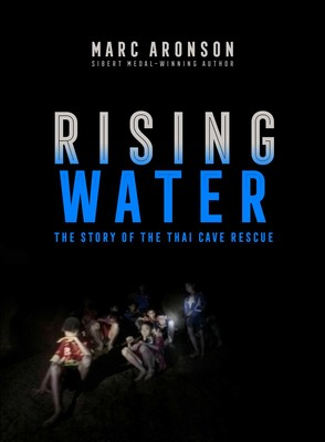 Image result for rising water aronson cover