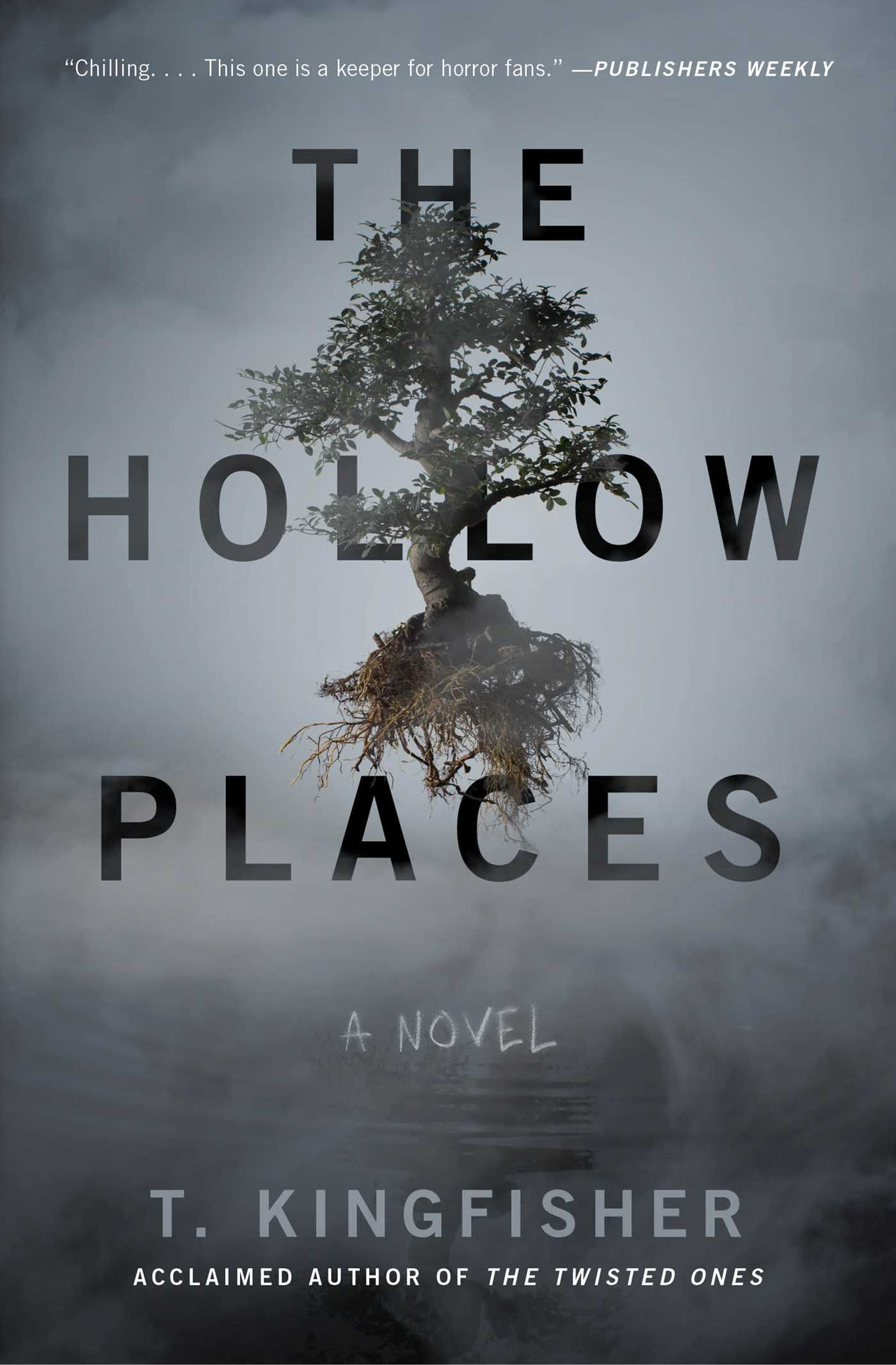 The Hollow Places | Book by T. Kingfisher | Official Publisher Page | Simon  & Schuster