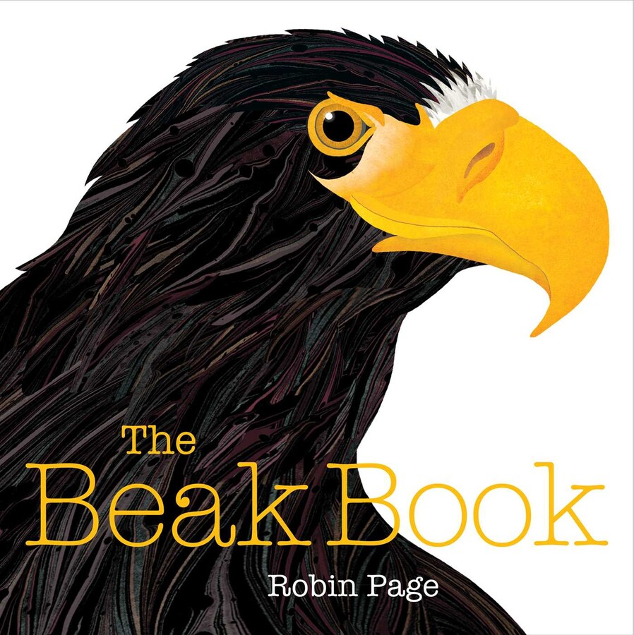 Image result for beak book page