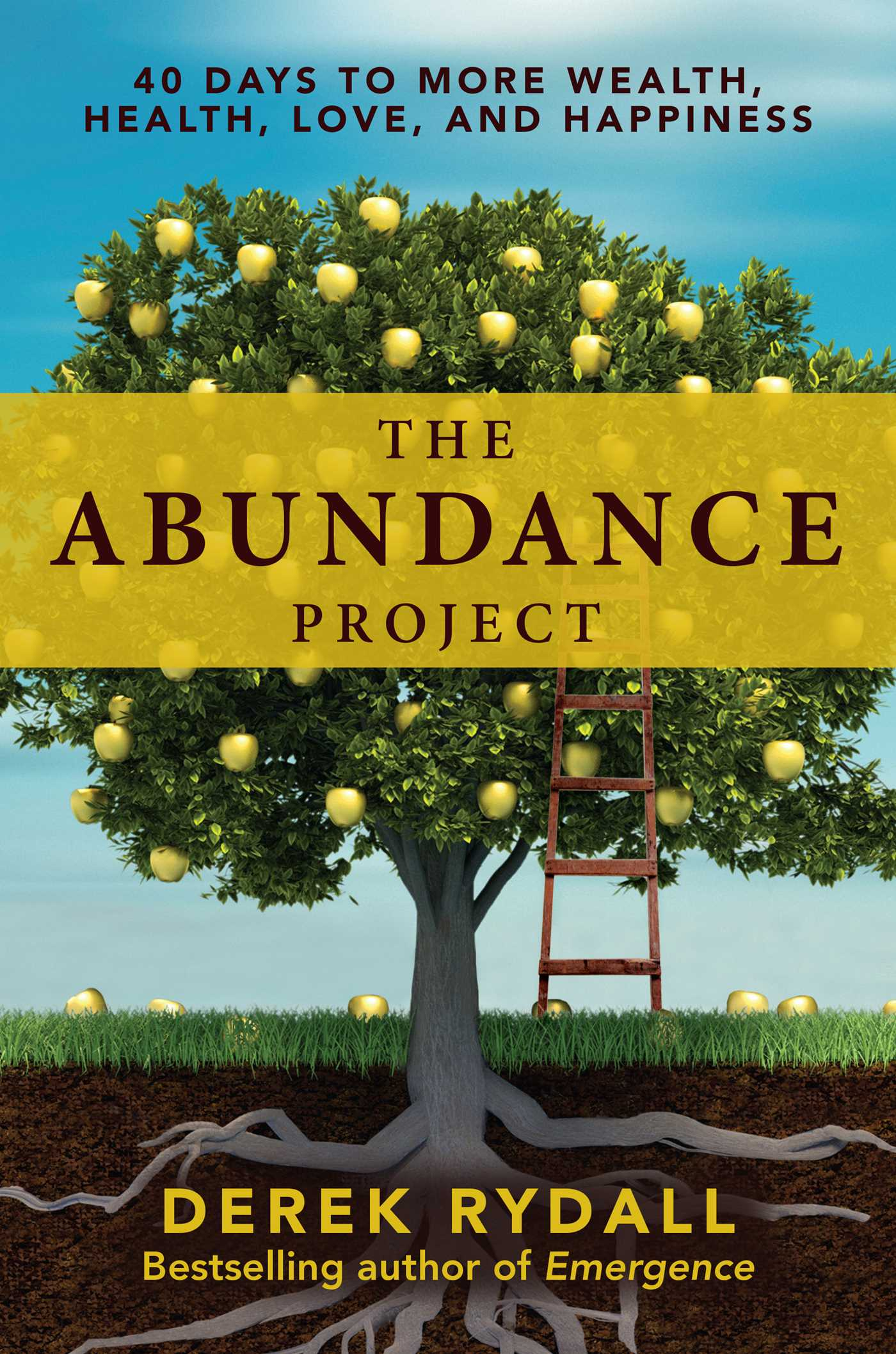 The abundance project 9781582706528 hr