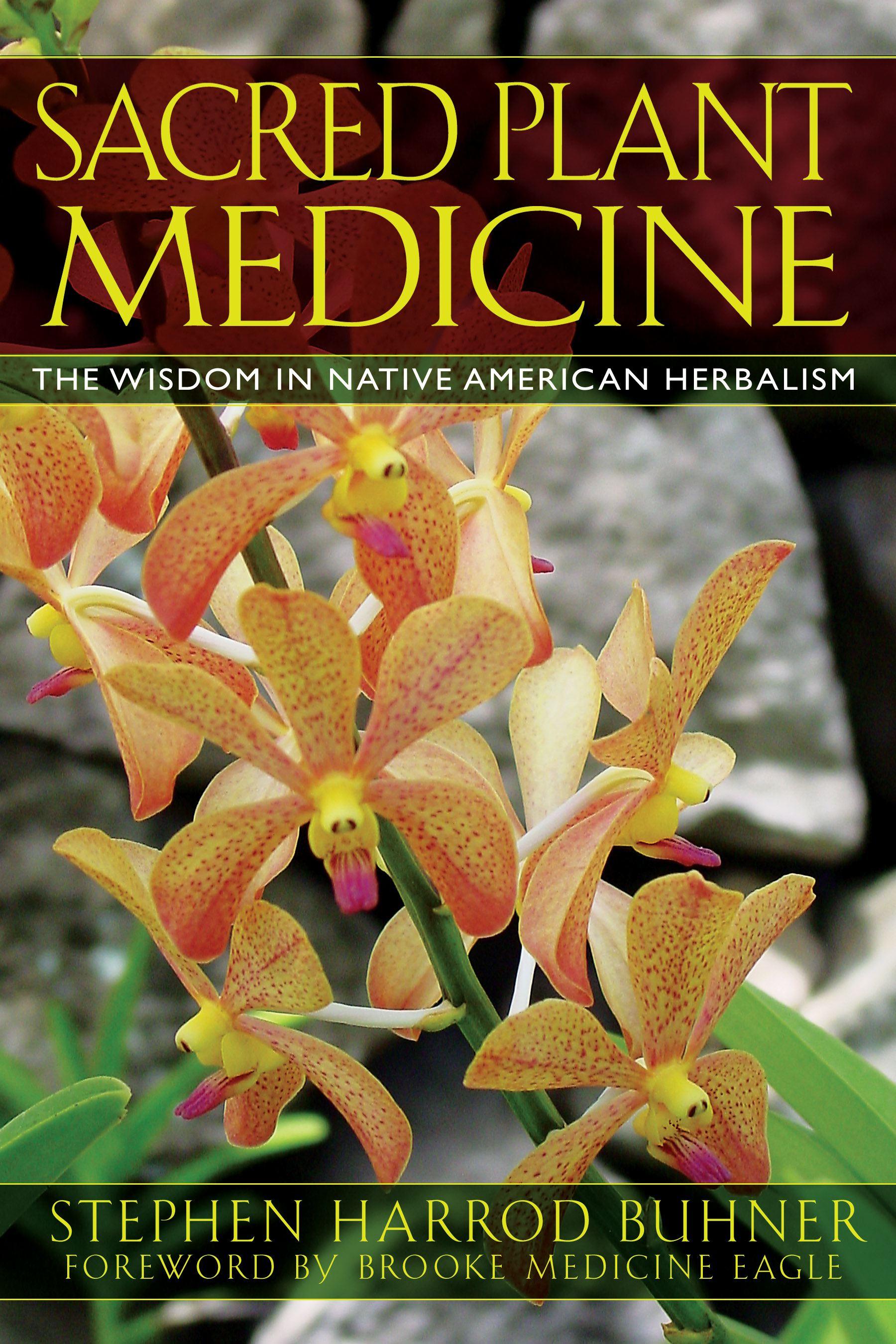 Sacred plant medicine 9781591430582 hr