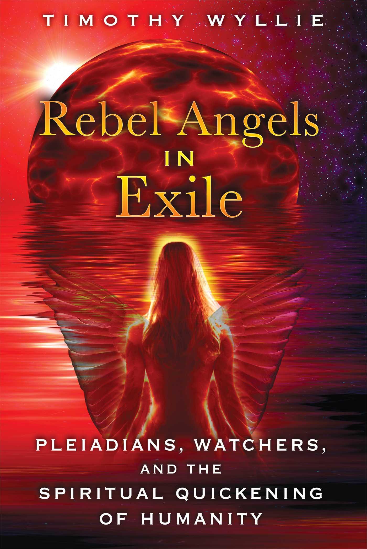 Rebel angels in exile 9781591431886 hr