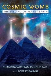 Cosmic womb 9781591433088