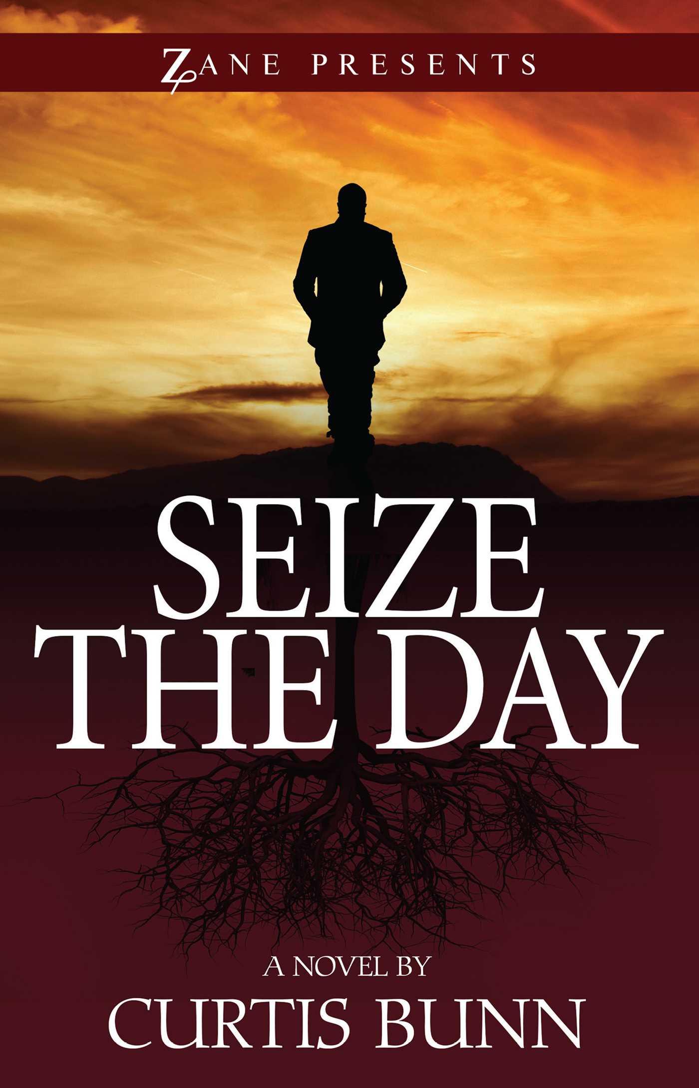 Seize the day 9781593095741 hr