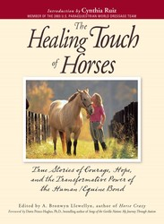 The Healing Touch For Horses