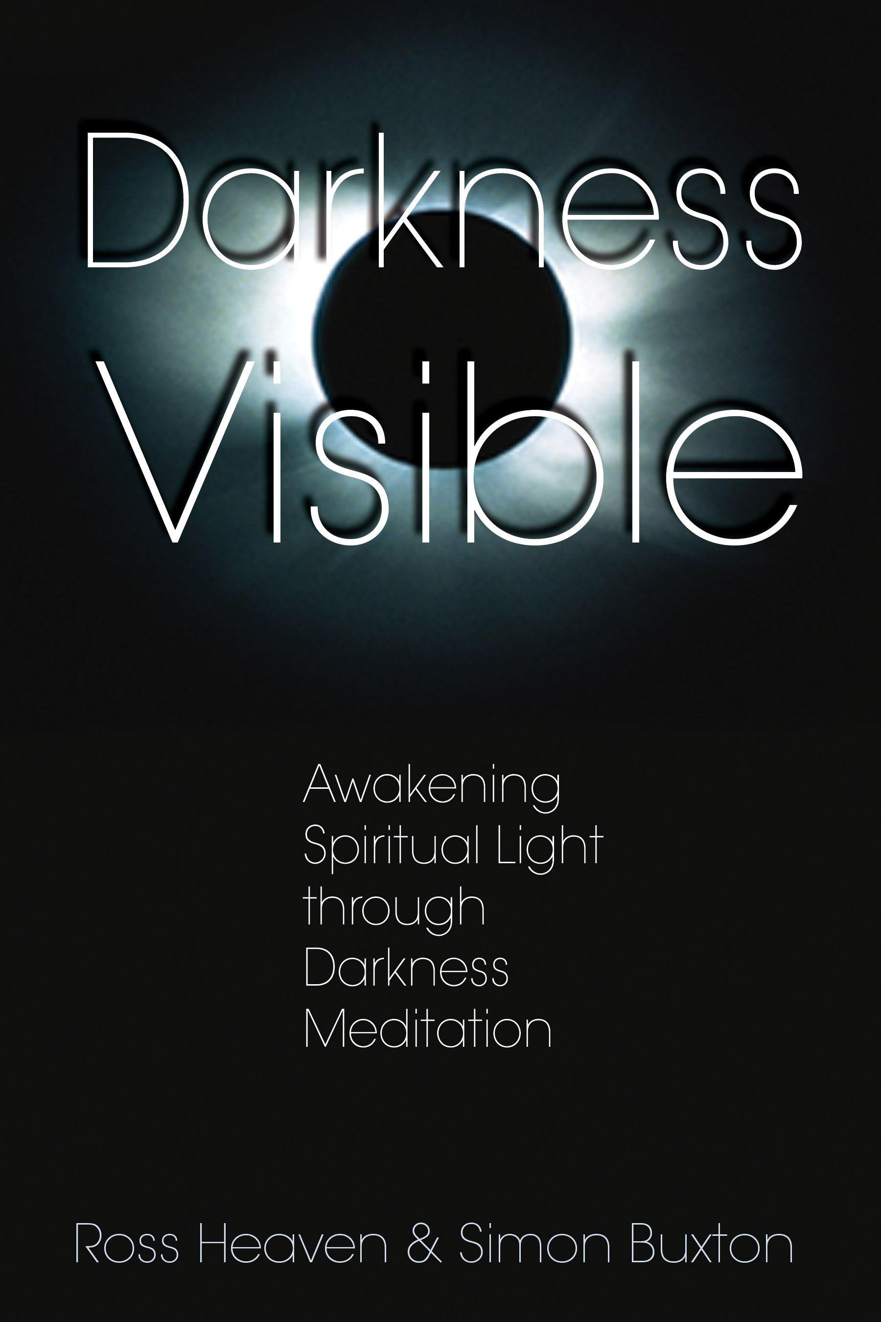 Darkness visible 9781594770616 hr
