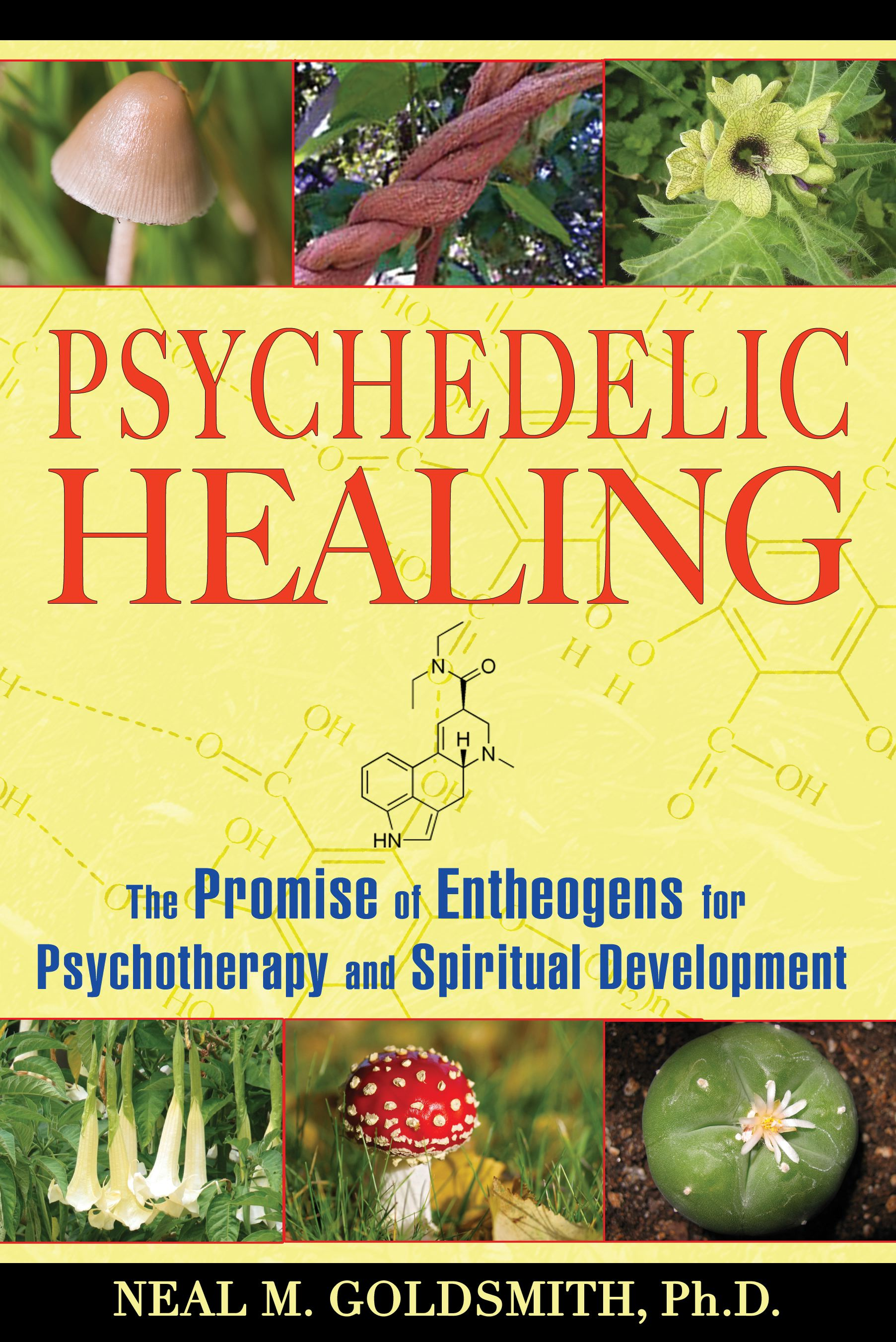 Psychedelic healing 9781594772504 hr