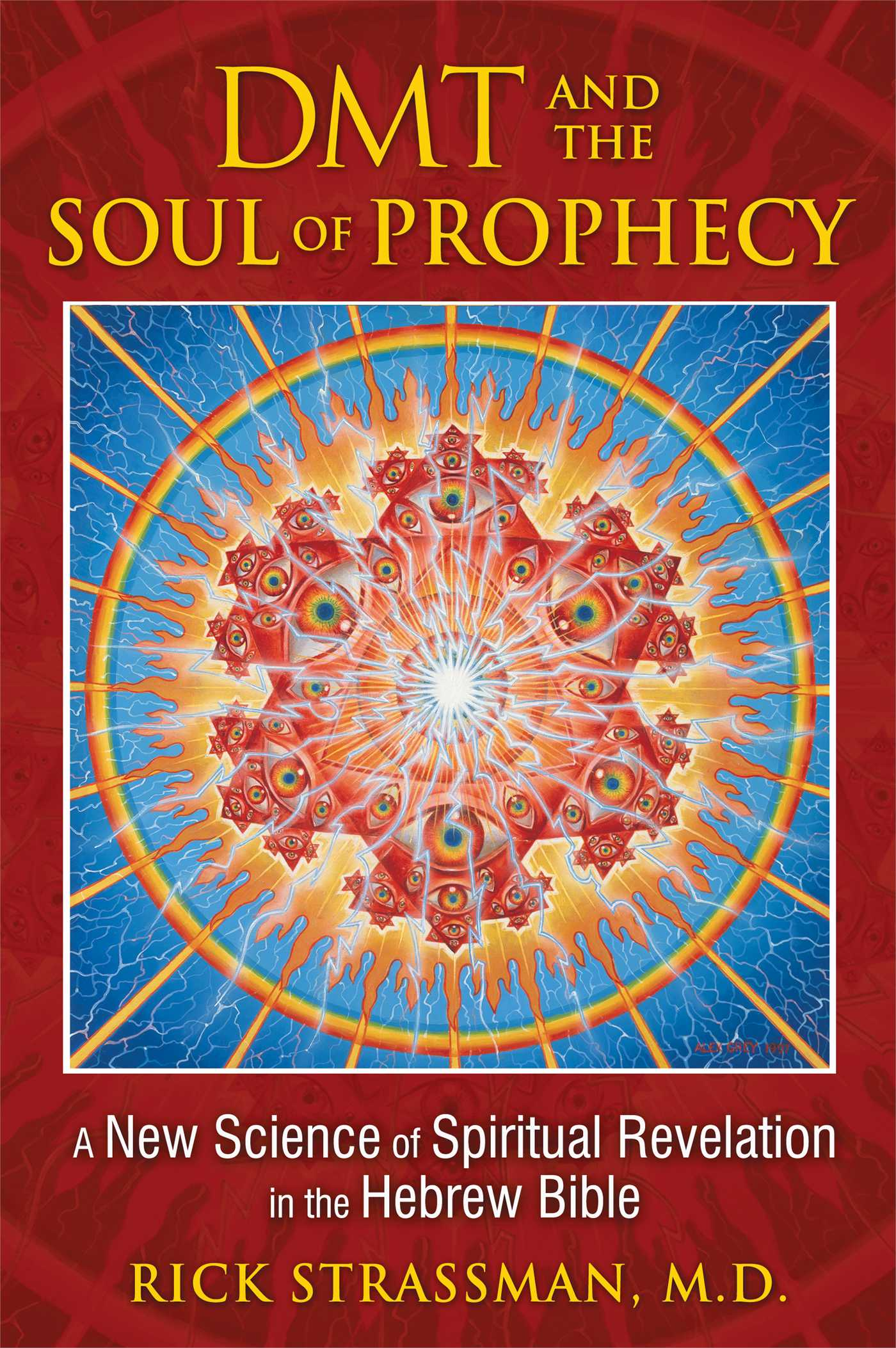 Dmt and the soul of prophecy 9781594773426 hr