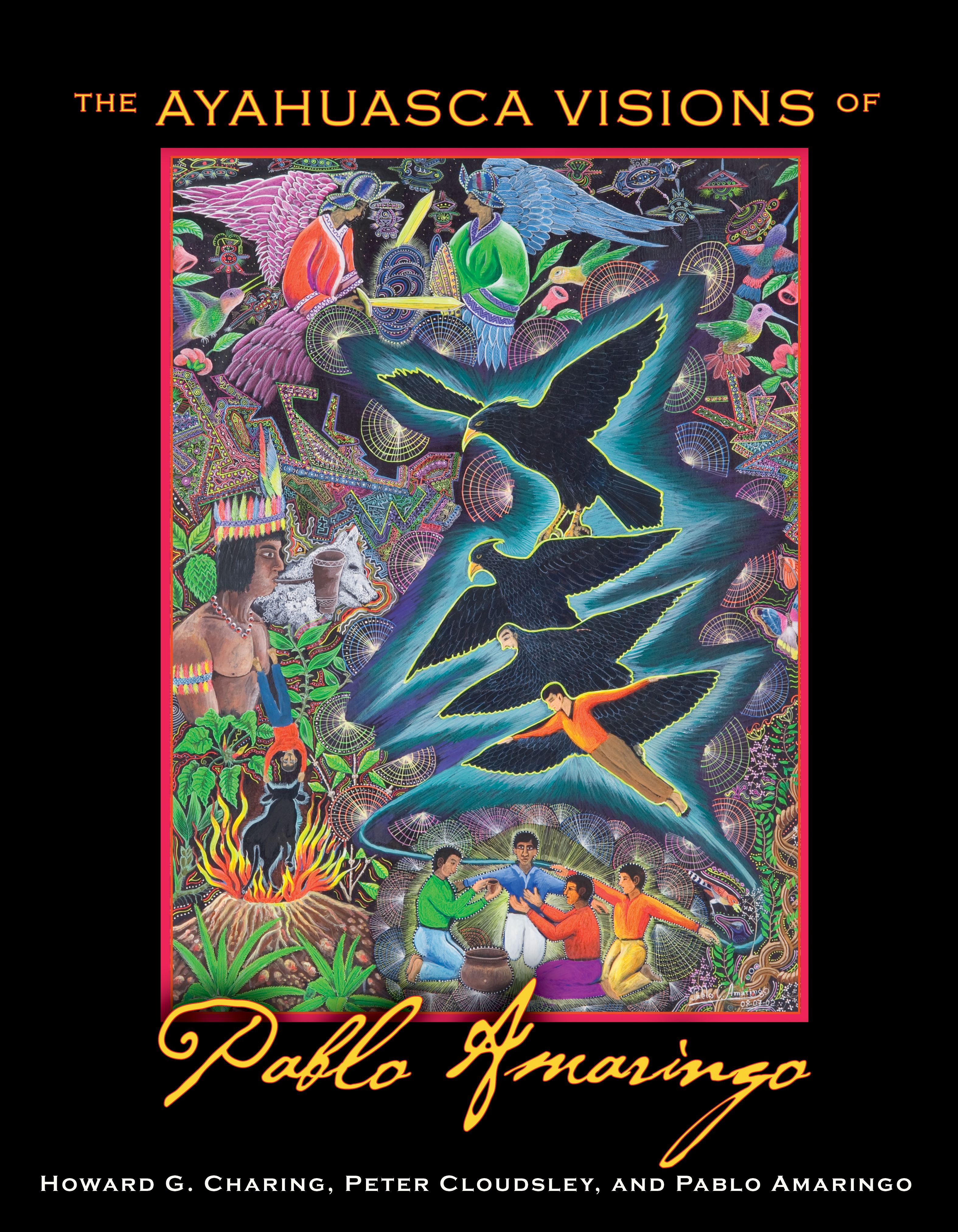 The ayahuasca visions of pablo amaringo 9781594773457 hr