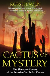 Cactus of mystery 9781594774911