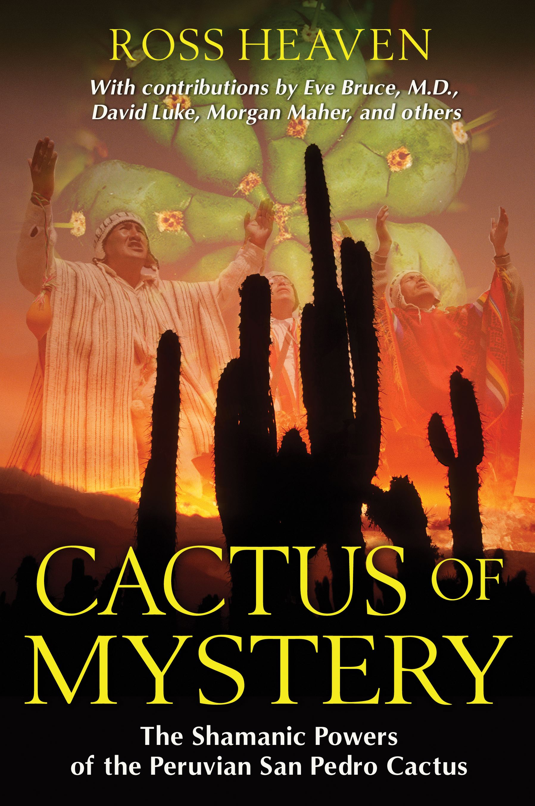 Cactus of mystery 9781594774911 hr