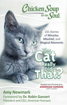 Chicken Soup for the Soul: The Cat Really Did That?