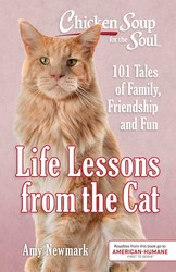 Chicken Soup for the Soul: Life Lessons from the Cat
