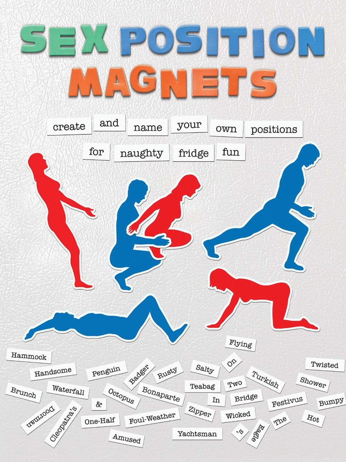 Sex Positions Magnets - Book Summary & Video | Official