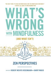 Buy What's Wrong with Mindfulness (And What Isn't)