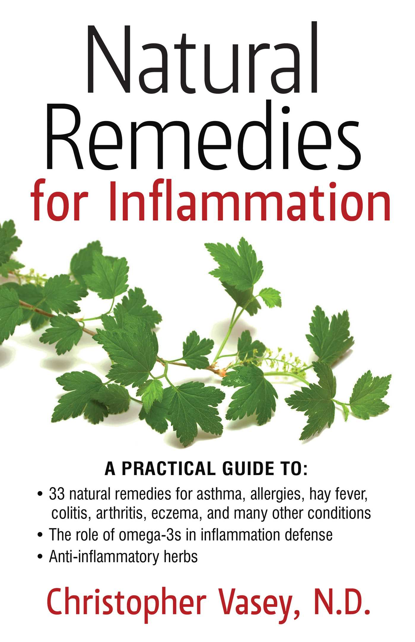 Natural remedies for inflammation 9781620553237 hr