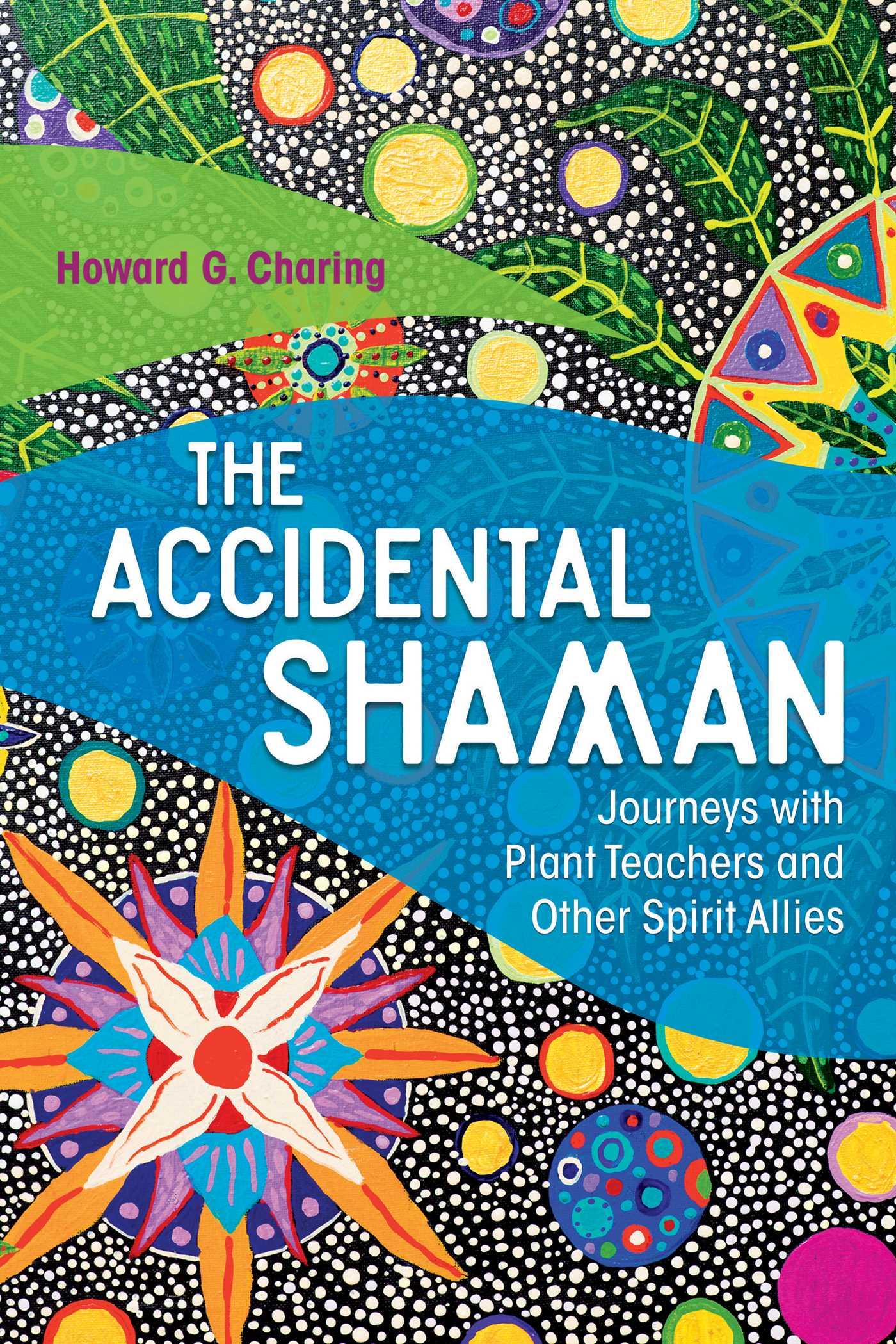 The accidental shaman 9781620556092 hr