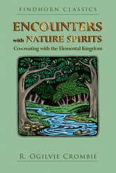 Encounters with nature spirits 9781620558379