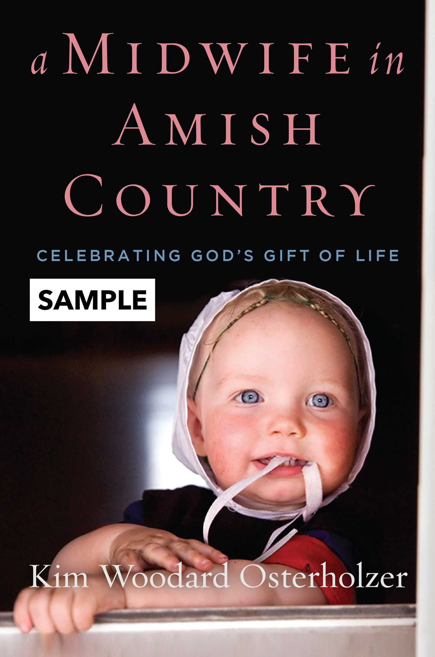 A midwife in amish country sample 9781621578574 hr