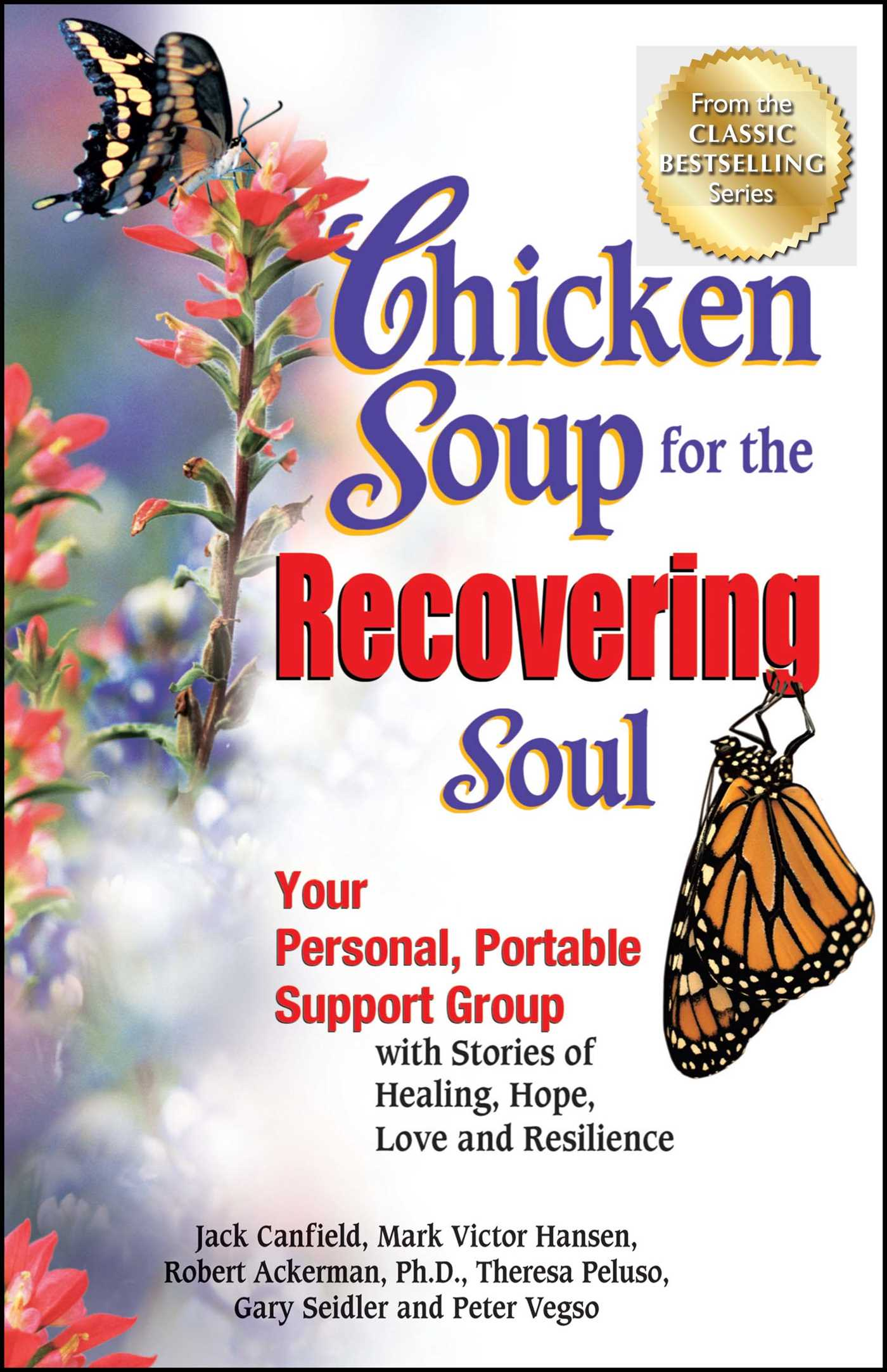 Chicken soup for the recovering soul 9781623610210 hr