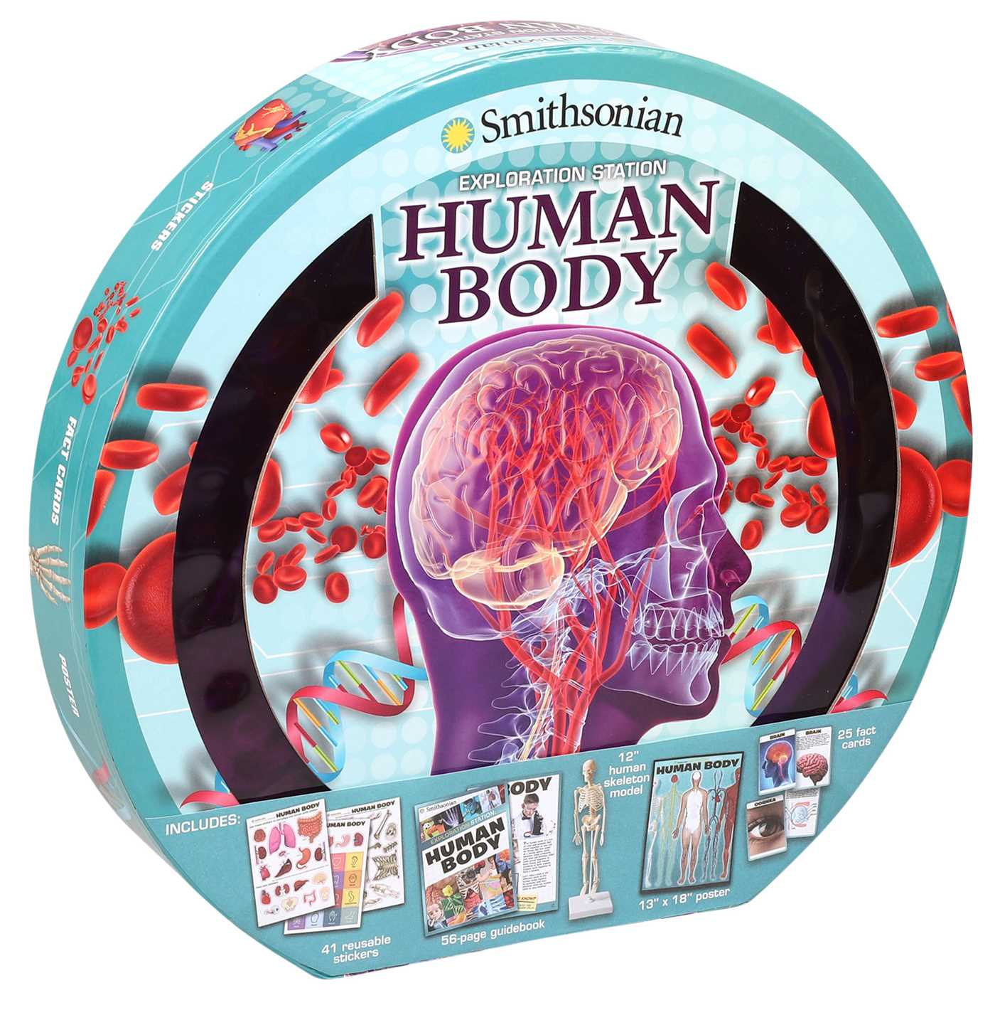 Smithsonian exploration station human body 9781626867215 hr