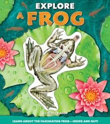 Explore a Frog