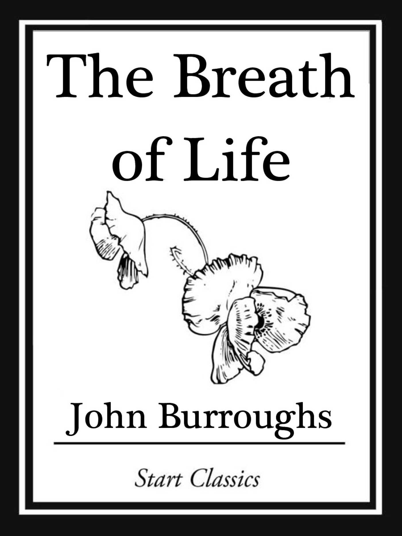 The breath of life 9781627936521 hr