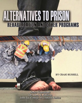 An analysis of an alternative for prison in the united states