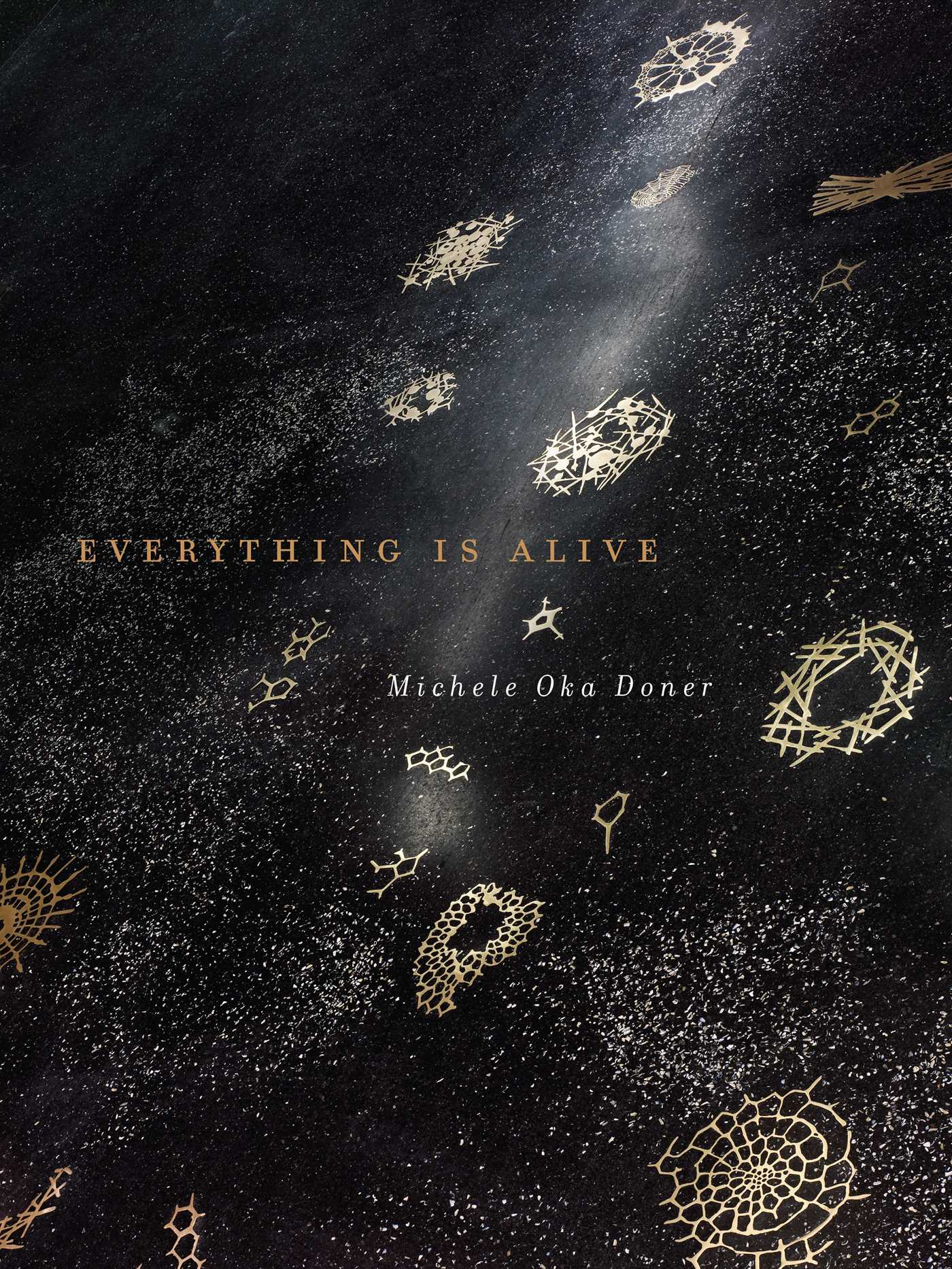 Everything is alive 9781682450840 hr