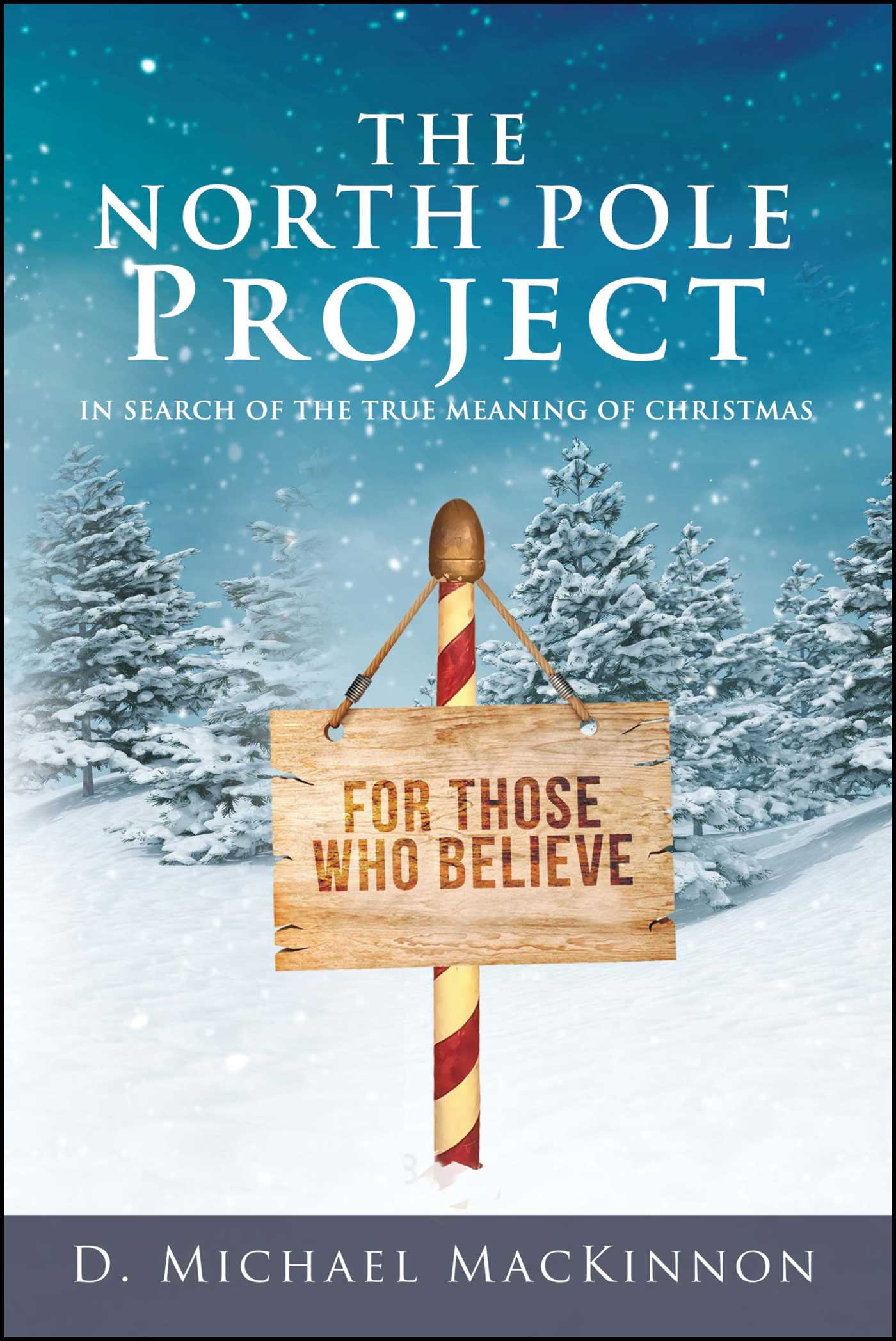 The North Pole Project | Book by D. Michael MacKinnon | Official ...