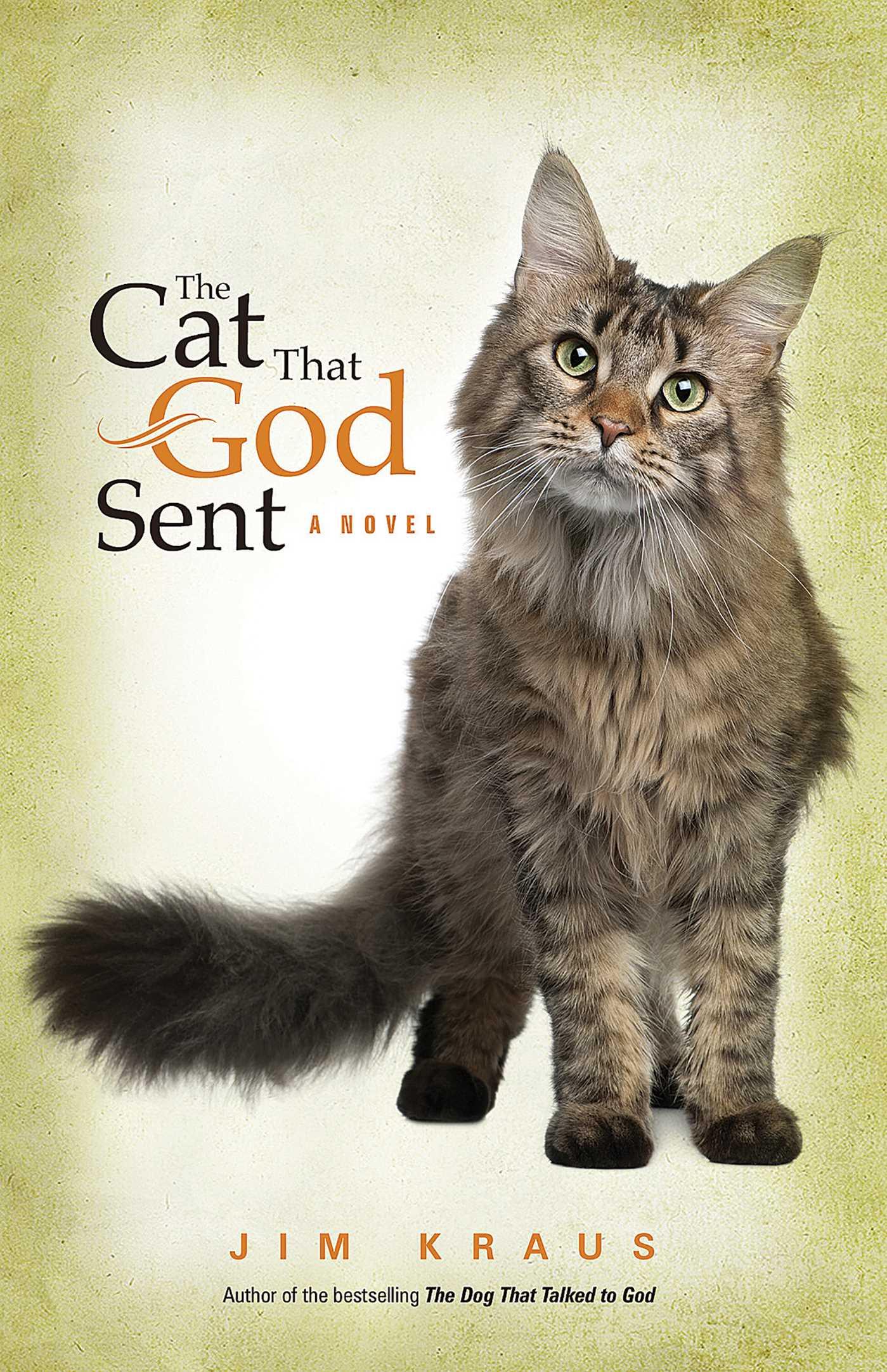 The cat that god sent 9781682998342 hr