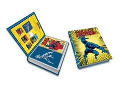 Marvel Comics: Black Panther Deluxe Note Card Set (With Keepsake Book Box)