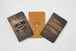 Harry Potter: Diagon Alley Pocket Notebook Collection (Set of 3)