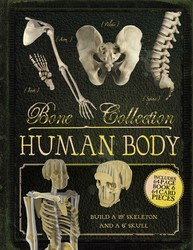Bone Collection: Human Body