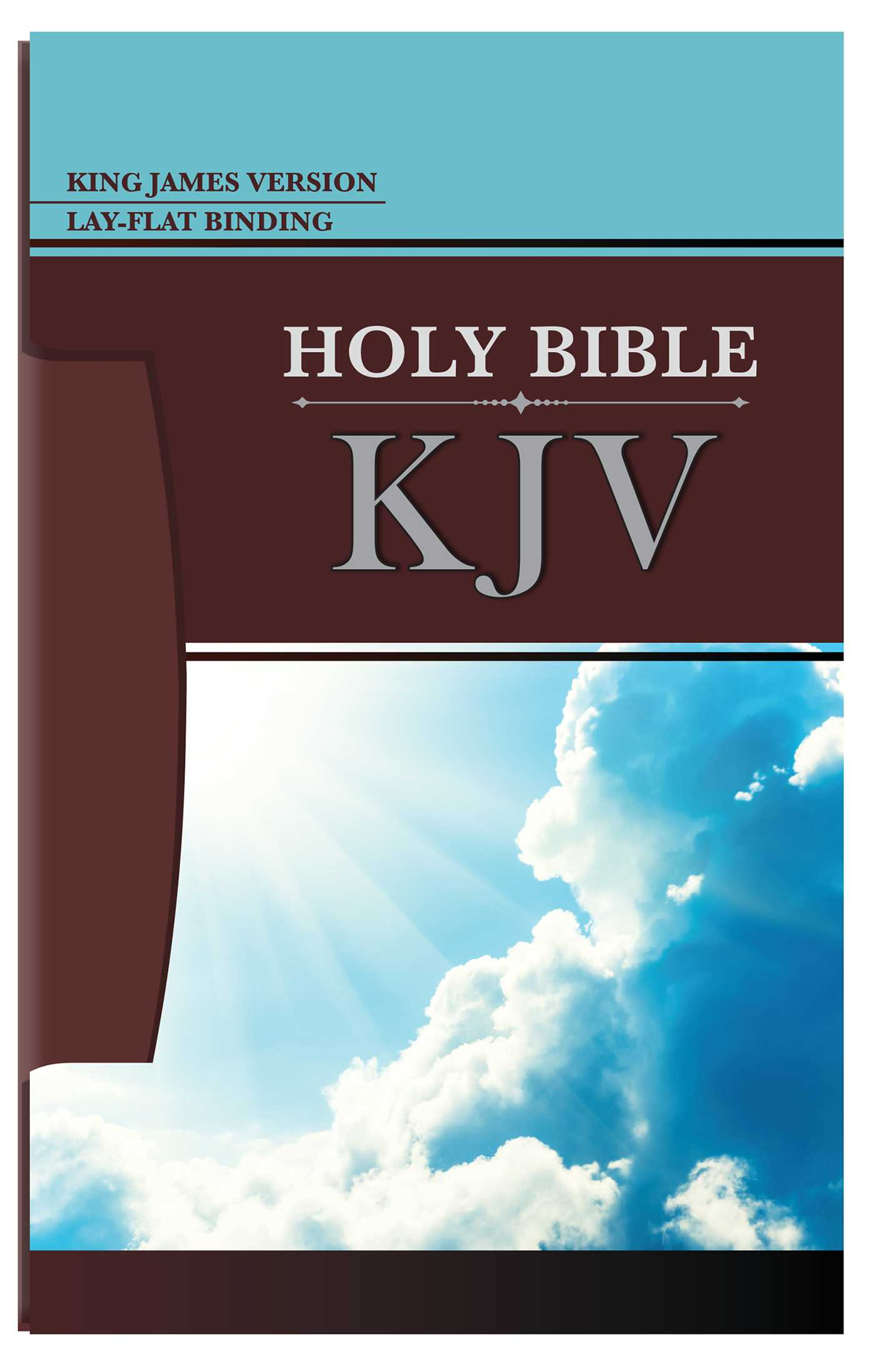Holy bible kjv 9781684123759 hr