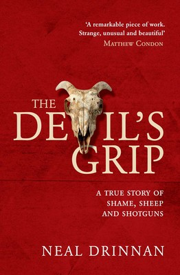 Image result for devils grip book cover