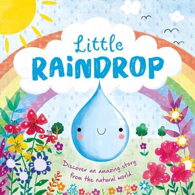 the little raindrop gray joanna kolanovic dubravka