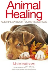Animal Healing with Australian Bush Flower Essences