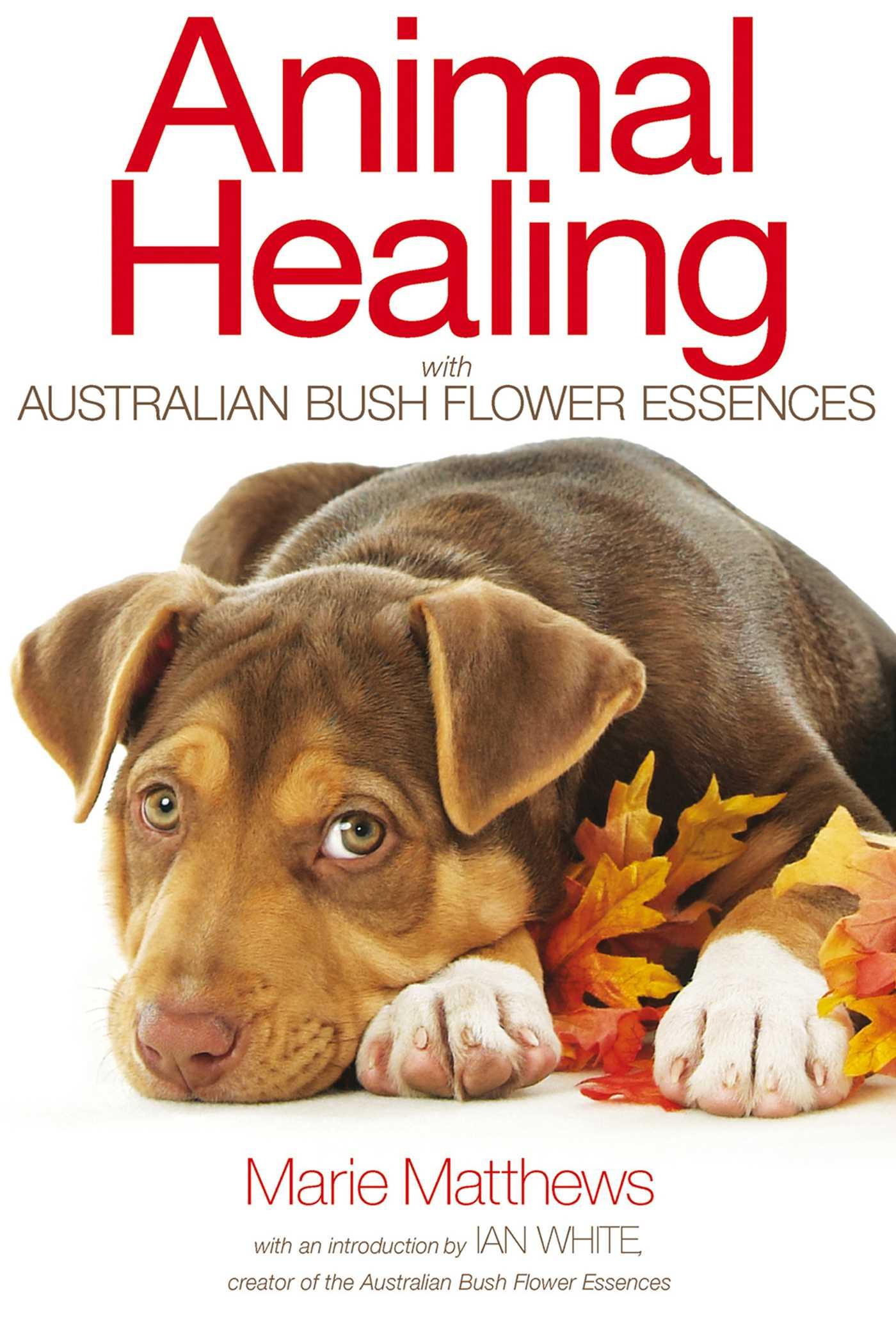 Animal Healing With Australian Bush Flower Essences Ebook By Marie