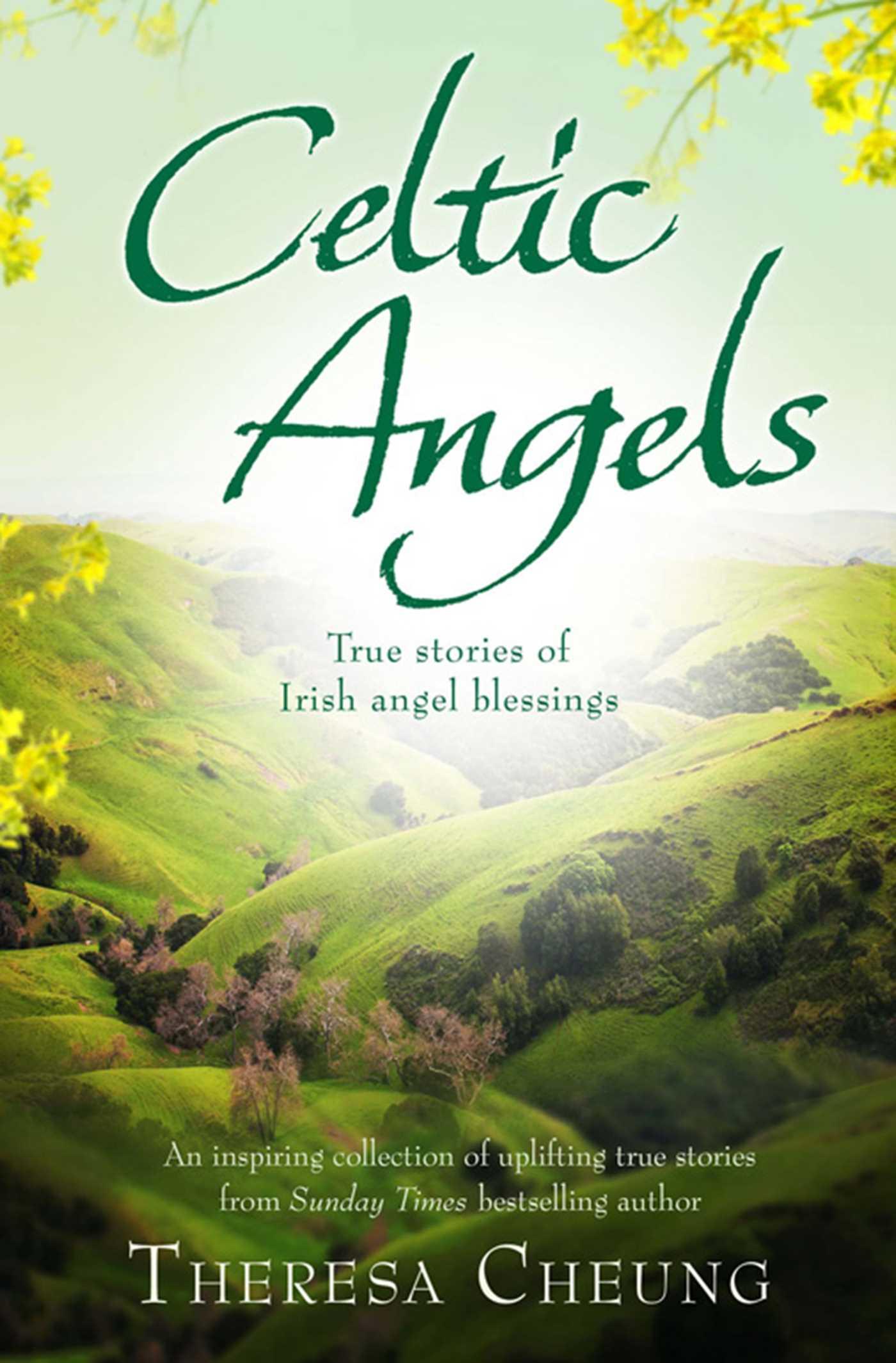 Celtic angels 9781849834841 hr