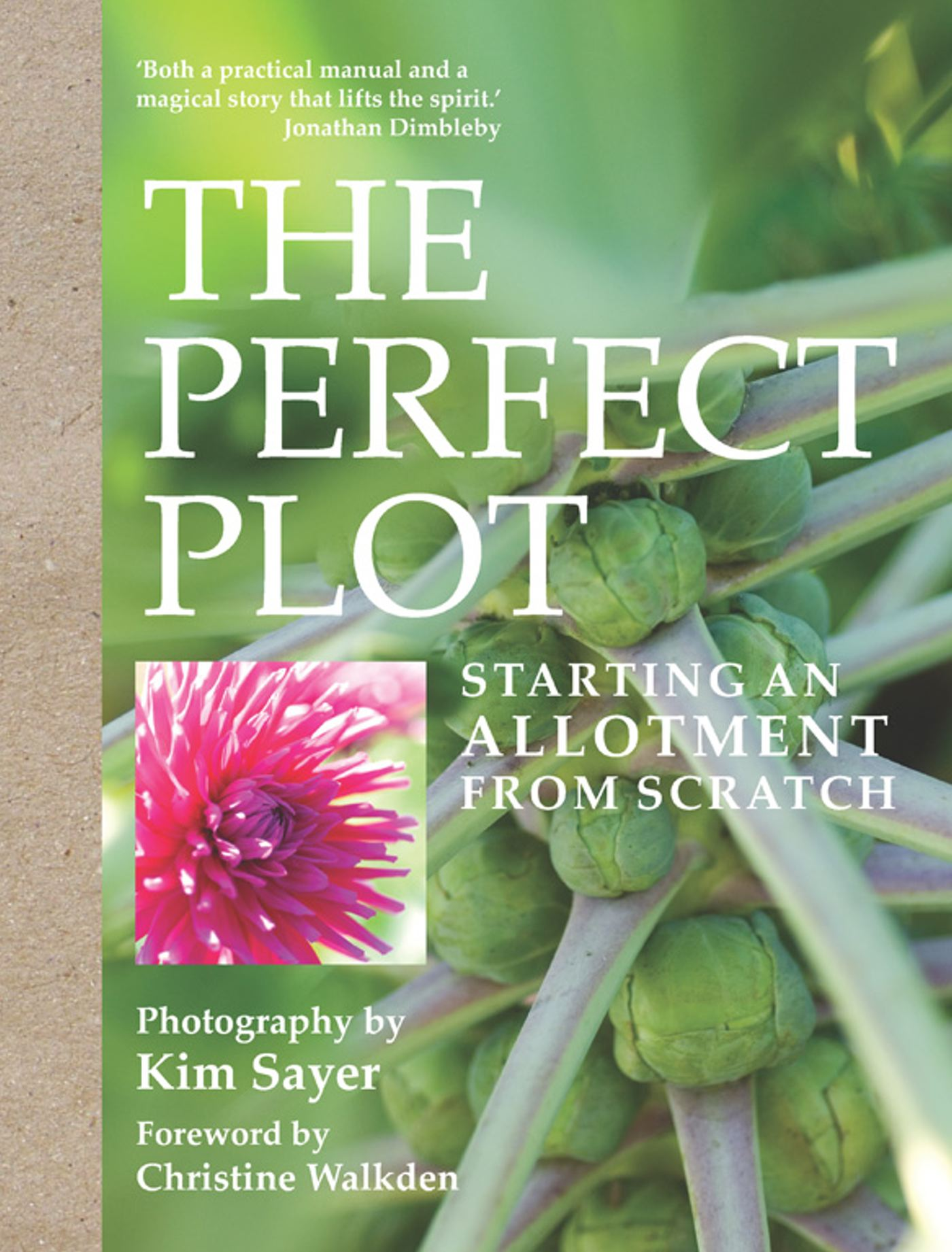 The perfect plot 9781849838337 hr