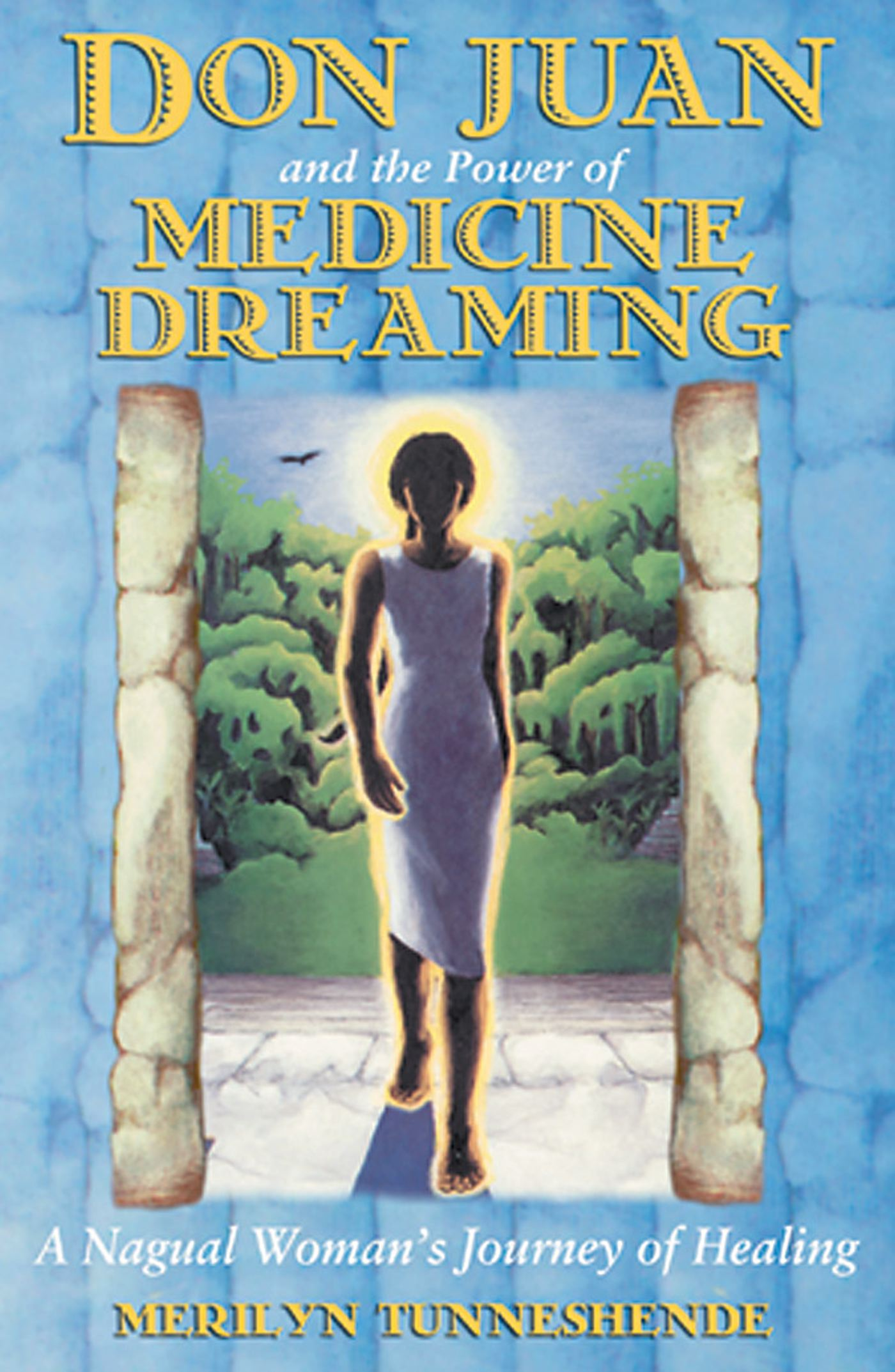 Don juan and the power of medicine dreaming 9781879181939 hr