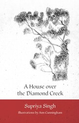 Picture of A House Over Diamond Creek